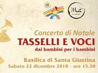 """Concerto di Natale """"Tasselli e voci: dai bambini per i bambini"""" @ Basilica di Santa Giustina"""